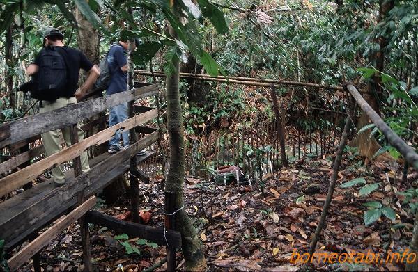 2002年5月 簡易な木道