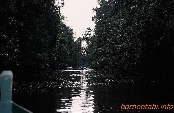 2005年2月 ボートに乗って生き物観察