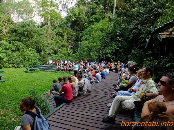 コウモリを待つ人々 2012年7月26日 ムル