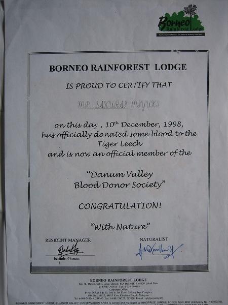 1998年12月10日 ヒルへの献血証明書