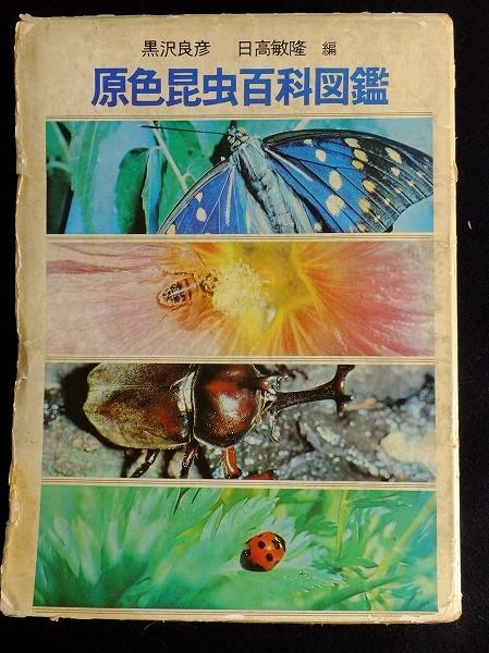 原色昆虫百科図鑑 箱表