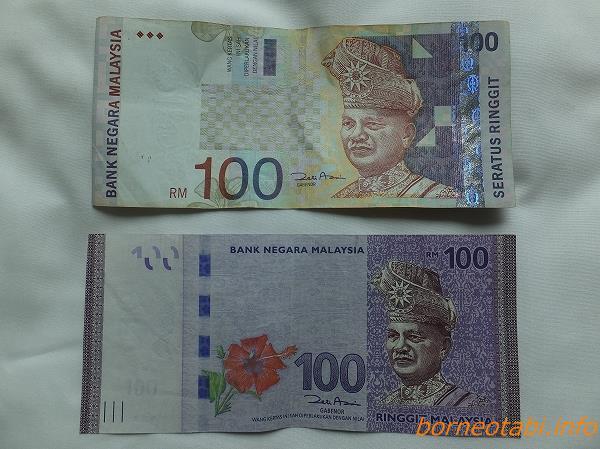 ボルネオのおカネ RM100表 2014.2.11