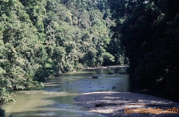 スガマ川 1998年12月 ダナンバレー