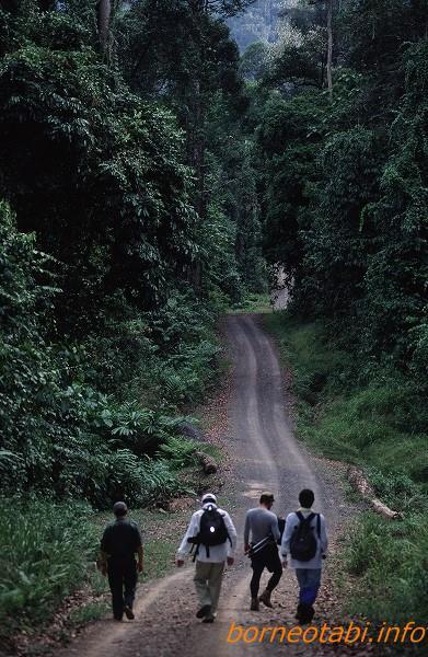ダナンバレーへの道 2002年5月