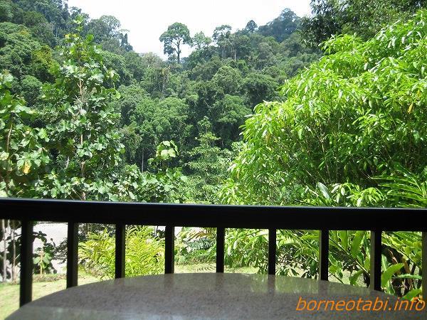部屋から見える景色2012.6.30 ダナンバレー