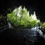 緑の回廊 (ムル)