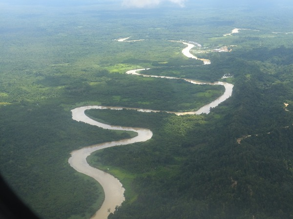 蛇行する川の風景