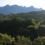 麓からのキナバル山