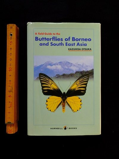 Butterflies of Borneo and South East Asia 表紙