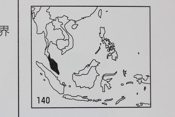 テイオウゼミ分布図 「世界のセミ200種」より