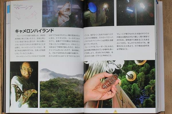 キャメロンハイランドの記事 p104-105 「灯りに集まる昆虫たち」