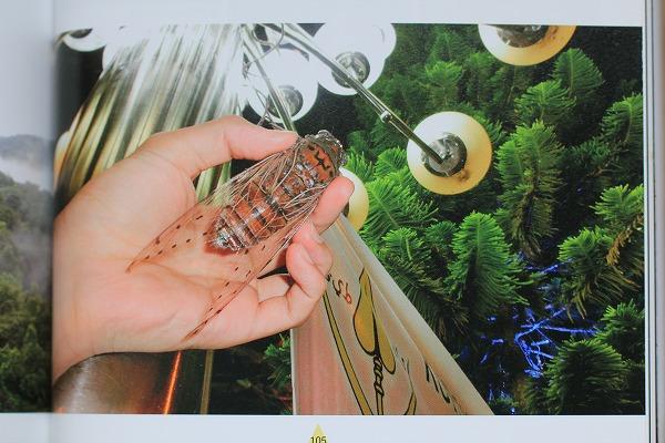 テイオウゼミの写真 p105 「灯りに集まる昆虫たち」